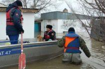 Паводки в Казахстане: более 4000 человек остались без крова