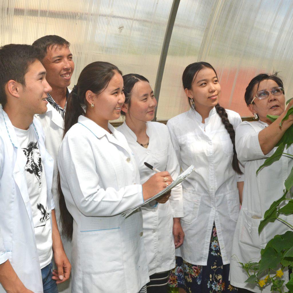 Новый метод борьбы с сорняками придумал таразский студент