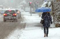 На севере Казахстана в ближайшие дни ожидаются заморозки