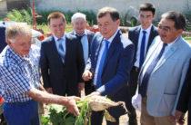Меркенцы будут экспортировать в Европу рыбную продукцию