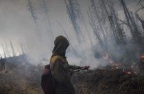 Пока акимы спорили, кому принадлежит территория, пожар уничтожил несколько тысяч гектаров полей