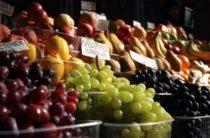 Жамбылцы увеличили свои доходы в 2,5 раза, используя личные подсобные хозяйства
