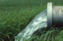 Туалетная вода к вам на стол?