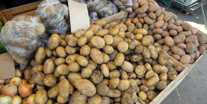 Почем нынче картошка? Акимат примет меры по стабилизации цен