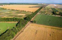 Обширные неиспользуемые земли сельхозназначения выявила прокуратура