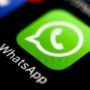 Почему нуротановцы сидят в WhatsApp?