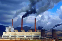 Жамбылский блогер поднимает экологическую проблему