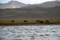 Эксклюзив: Что ищут экологи на дне озера Сон-Куль после катастрофы в горах Центрального Тянь-Шаня?