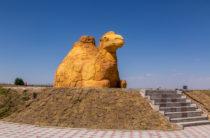 Жуалынского верблюда – в книгу рекордов Гиннеса!