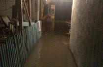 Тараз, как и деревню Гадюкино, затопило