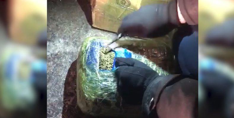 35 килограммов наркотиков изъяли у жителя Толе би