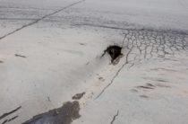 Асфальт провалился на центральной улице Тараза