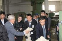 Жамбылская шерсть пойдет в Китай
