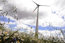 Ветровая электростанция – совместный казахстанско-китайский проект в Сарысуском районе Жамбылской области