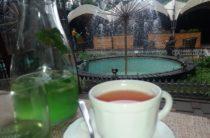 Внедрять мировые стандарты в сфере ресторанного и гостиничного бизнеса намерены в Таразе
