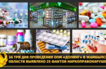 25 фактов наркоправонарушений установлено в Жамбылской области за три дня
