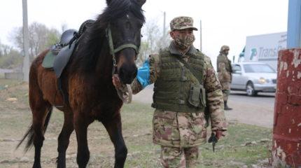 Конные патрули выставлены у блок-постов Тараза