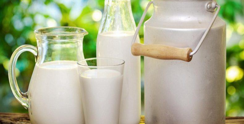 Сэкономить на молоке для больных намеревался главврач районной больницы в Жамбылской области
