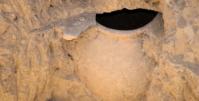 Житель Тараза нашел настоящее сокровище у себя на участке