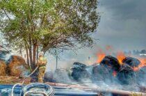 Жамбылские пожарные спасли дома
