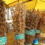 Жамбылские фермеры переходят на производство рентабельных сельхозкультур