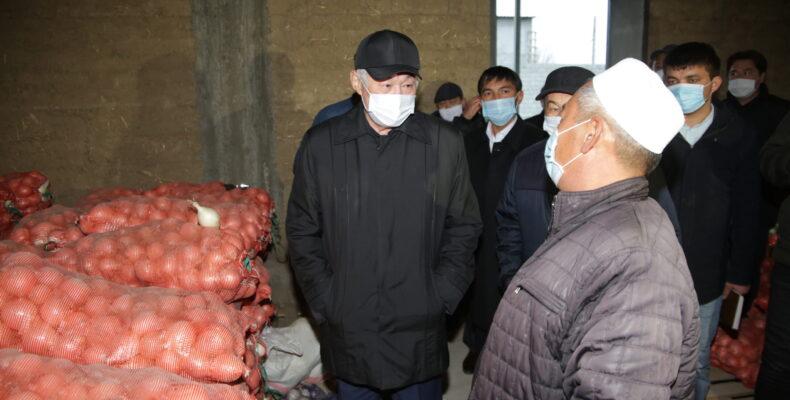 Незачем сейчас продавать жамбылский лук по бросовой цене в соседние регионы и страны — Бердибек Сапарбаев
