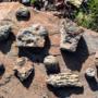 Артефакты под ногами – долина брахиоподов в Жамбылской области