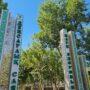 В Таразе действует Парк Здоровья