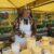Не всё так гладко в сладком деле – мнение жамбылских пчеловодов