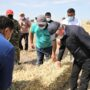 Заготовить корма с избытком — Бердибек Сапарбаев