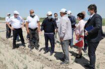 Жамбыл облысы Жамбыл ауданы халқының 69 пайызы орталықтандырылған ауызсумен қамтамасыз етілген