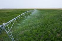 Ирригационные системы внедряют в Жамбылской области