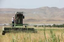 Жамбылская область обладает высоким сельскохозяйственным потенциалом