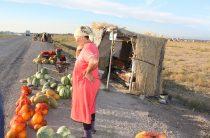 Уличную торговлю в Таразе сделают цивилизованной