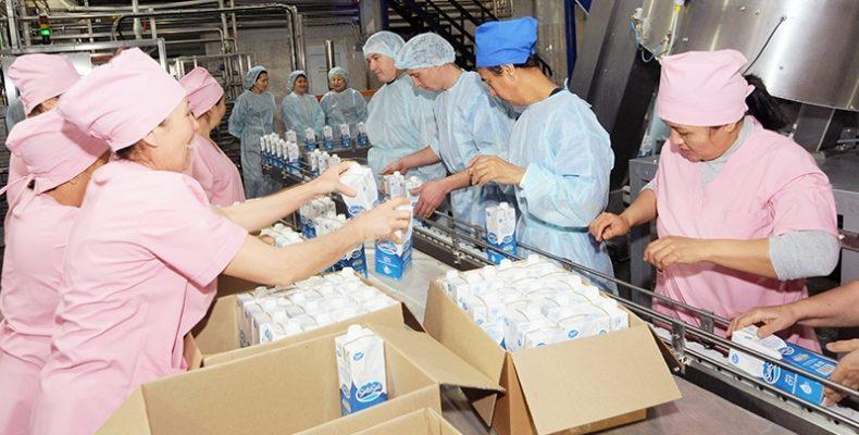 Жамбылцы стали отдавать предпочтение местной молочной продукции