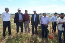 Археологическая экспедиция началась на месте древнего городища в Жамбылской области