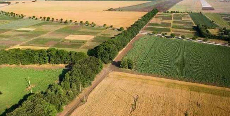 Информацию о состоянии казахстанских земель опубликуют в открытом доступе