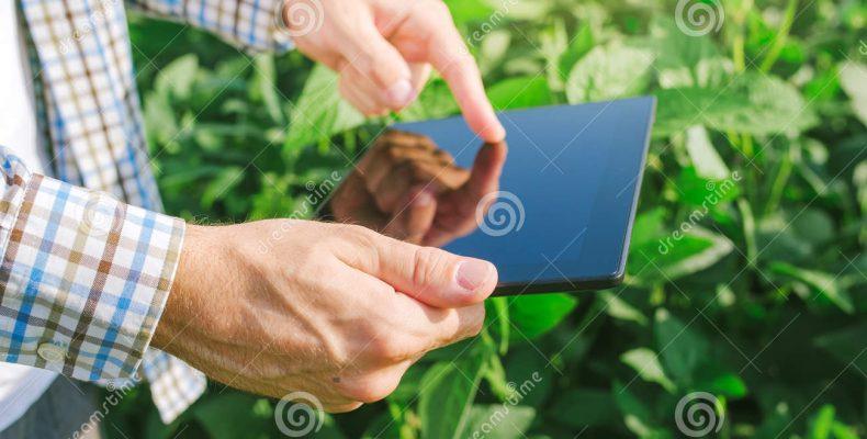 Цифровая платформа в помощь агробизнесу