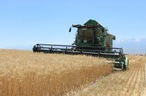 В Казахстане «оцифровано» более 6 млн гектаров пашни