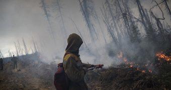 Жамбылский лесник скончался при тушении природного пожара