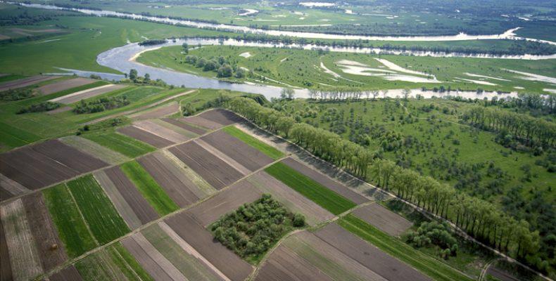 Назначен новый руководитель управления природных ресурсов Жамбылской области