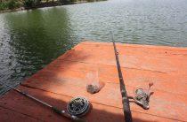 Более ста водоемов Жамбылской области перспективны для рыбоводства