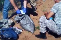 Более 53 кг марихуаны выявлено в Жамбылской области за пять дней