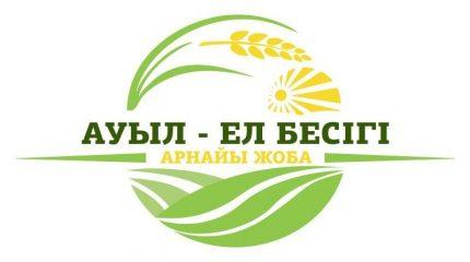 «Ауыл — Ел бесігі»: более ста проектов реализуют в Жамбылской области
