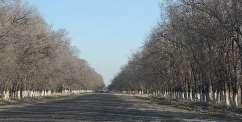 Готовы ли наши дороги к зиме?