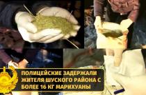 Жамбылдық полицейлермен Шу ауданы тұрғынынан 16 келіден астам марихуана тәркіленді