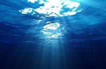 Водоохранные зоны в Таразе находятся под угрозой – эксперт