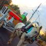 В автобусе или в карете? — на чем можно проехаться в Таразе (Фоторепортаж)