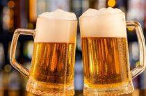Где в Таразе можно красиво отдохнуть, выпить настоящего чешского пива и принять высоких гостей?
