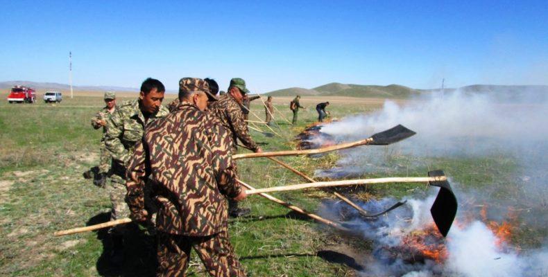 Первый природный пожар заполыхал в жамбылских степях